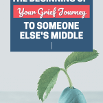 Don't Compare Your Grief Journey Pin