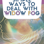 Simple Ways to Deal with Widow Fog